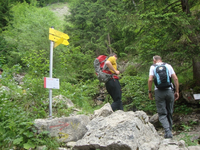 Klettersteig Gelbe Wand : Bergfex gelbe wand stei klettersteig tour bayern